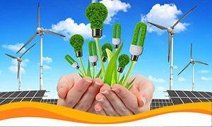 Виробники «зеленої» енергії попереджають про можливу екологічну катастрофу