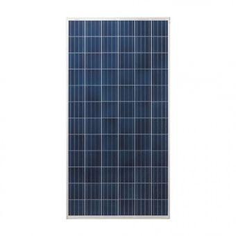 Купити Сонячна панель Risen RSM72-6-335Р в магазині Генерація за 121.4 $